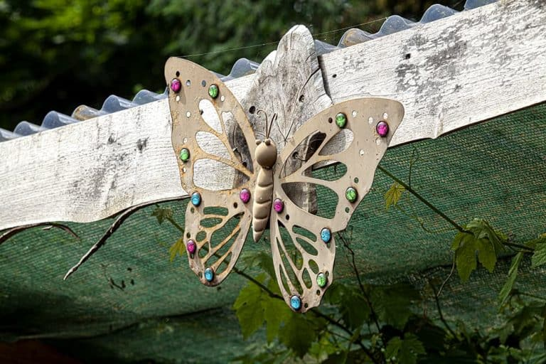 A decorative butterfly